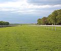 Track at the July Course, Newmarket, UK.jpg