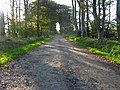 Track to Nether Anguston - geograph.org.uk - 660215.jpg