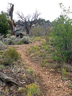 Bill Hall Trail Grand Canyon hiking trail