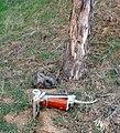 Trashing San Timoteo Canyon, Redlands, CA 1-8-2012c (6836923777).jpg