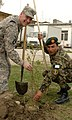 Tree planting for Afghan new year (4454192834).jpg