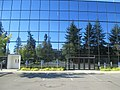 Trees reflected in office building windows (7967359878).jpg