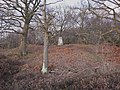 Triangulation pillar on Broxhead Common - geograph.org.uk - 1704668.jpg
