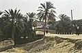 Tunis1960-007 hg.jpg