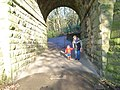 Tunnel beneath dismantled railway at Wilton Park. - geograph.org.uk - 54180 (cropped).jpg