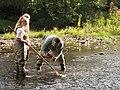 Turning rocks to find animals (6207752670).jpg