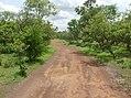 UNESCO Niokolo-Koba National Park Senegal (3687360806).jpg