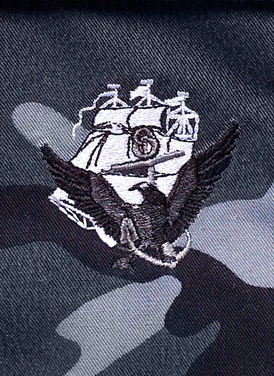 Nod >> File:US Navy 041026-N-0000X-002 The new Navy insignia, Anchor, Constitution and Eagle (ACE ...