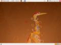 Ubuntu 8.04 Dutch.png
