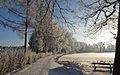 Uferpromenade des Harabruckteiches im Winter.jpg