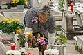 Un día en el cementerio - One day in the cemetery (22656818056).jpg