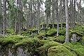 Uppland Fiby Forest Sweden (6804107759).jpg
