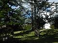 Uruguai - Maldonado - Punta Del Este - Punta Ballena - Piriápolis (Páez Vilaró) - panoramio (78).jpg