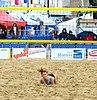 VEBT Margate Masters 2014 IMG 4554 2074x3110 (14965853846).jpg