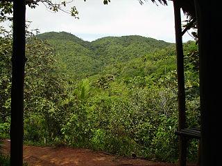 Vallée de Mai protected area