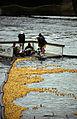 Vattenfestivalen19940814Ankracet3.jpg
