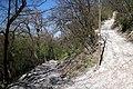 Via degli Dei, Casalecchio di Reno, Sentiero dei Bregoli 06.jpg
