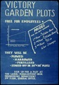 Victory Garden Plots Free For Employees - NARA - 534116.tif