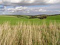 View along Brimstone Bottom towards East Chaldon - geograph.org.uk - 266601.jpg