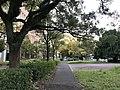 View in Maidashi Campus of Kyushu University 3.jpg