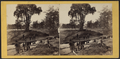 View on the Chemung, E.R.R, from Robert N. Dennis collection of stereoscopic views.png