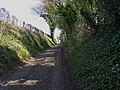 View up Lower Lamborough Lane, Cheriton - geograph.org.uk - 1207251.jpg