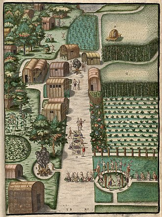 Theodor de Bry - Village of Secoton, engraved illustration by de Bry accompanying Thomas Hariot's book of 1588 A Briefe and True Report of the New Found Land of Virginia