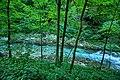 Vintgar Gorge (35811854975).jpg