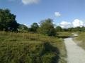 Vlakte van Waalsdorp (Waalsdorpervlakte) 2016-08-10 img. 533.png
