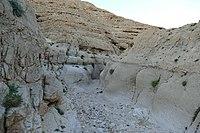 Wadi-Makukh-654.jpg