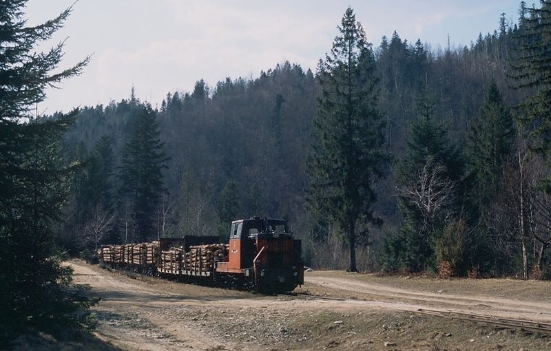 Файл:Waldbahn Wyhoda.jpg