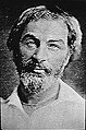 Walt whitman 1854 rev.jpg