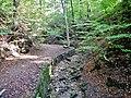 Wanderweg beim Sonnenberg - panoramio.jpg