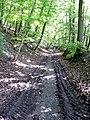 Wanderweg im Naturpark Schönbuch bei Breitenholz - panoramio.jpg