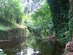 Water of Leith - The Water of Leith, upriver from the Dean Village, running through a wooded gorge past the New Town.