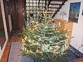 Weihnachtsbaum 2011.jpg