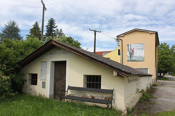 Weinreben-Vortreibhaus 03.jpg
