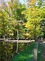 Wildpark alte fasanerie (natur).jpg