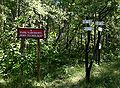 Witacz w Parku Narodowym Bory Tucholskie 03.07.10 p.jpg