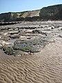 Wooden groyne and revetments - geograph.org.uk - 792677.jpg