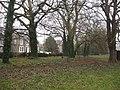 Woodland along Shaftesbury Road - geograph.org.uk - 704346.jpg
