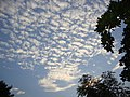 Woolly clouds jkc puram TN - panoramio.jpg