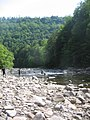 Worlds End State Park Loyalsock Creek.JPG
