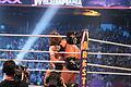 WrestleMania XXX IMG 4058 (13768191303).jpg
