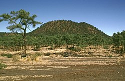 """Daniel Mtz on Twitter: """"Vista del #crater del #volcan #xitle en la ..."""