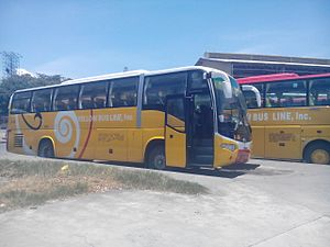 Yellow Bus Line - Wikipedia