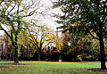 Yale Old Campus (4139296788).jpg