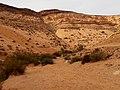 Yamin Gulch, Negev, Israel נחל ימין, הנגב, ישראל - panoramio (4).jpg