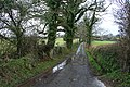 Yealmpton, towards Hall Torrs - geograph.org.uk - 659828.jpg