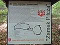 Zamek Pilcza DK11 (3).jpg
